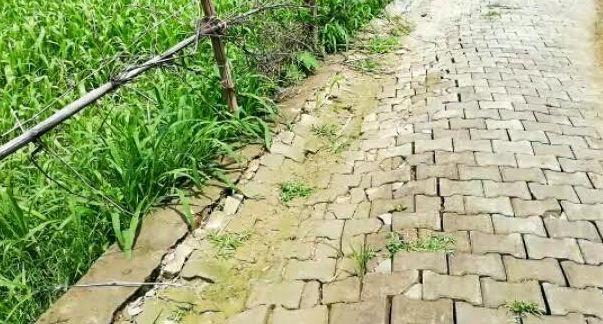 भ्रष्टाचार होने का और क्या चाहिए सबूत, 2 महीने में नवनिर्मित इंटरलॉकिंग सड़क टूटी