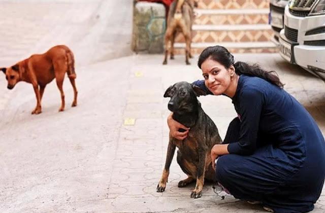आवारा कुत्तों को खाना खिलाने पर महिला पर लगा साढ़े तीन लाख रुपये जुर्माना