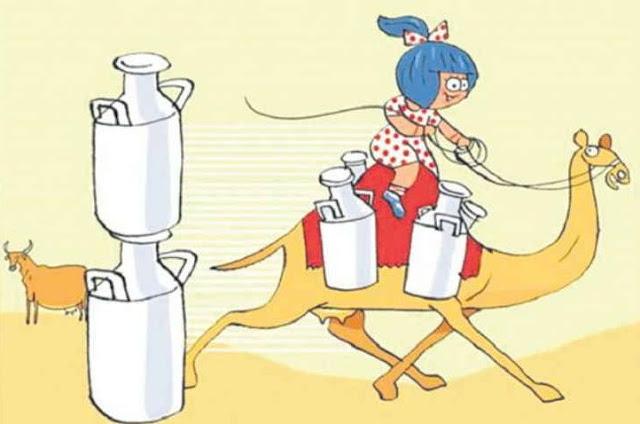 देश में पहली बार ऊंटनी का बोतलबंद दूध बिकेगा, इस बीमारी में है बेहद लाभकारी
