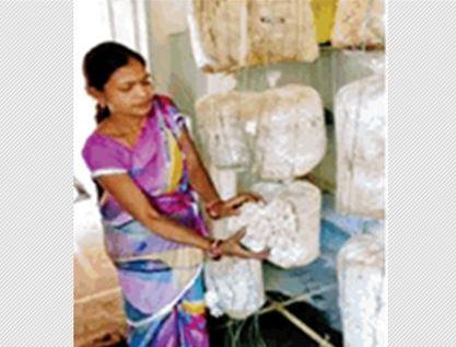 कभी गरीबी की मार झेल रही ये महिला अब हर महीने कमाती है 13 लाख रुपए