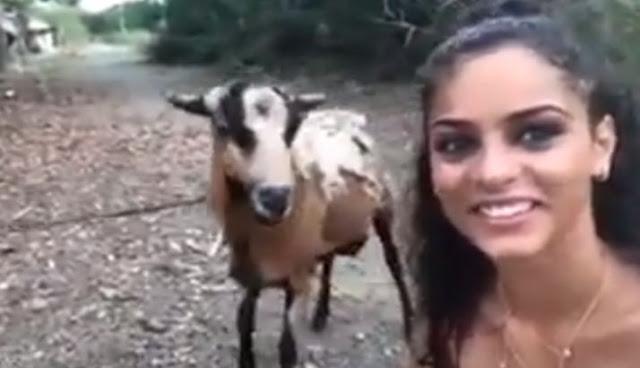 जब बकरे के साथ सेल्फी ले रही युवती पर पीछे से कर दिया हमला
