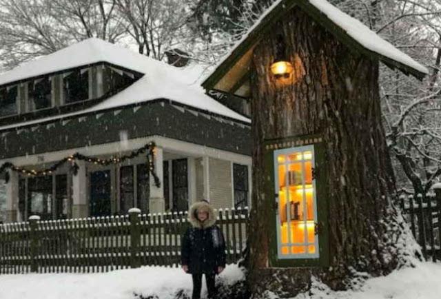 महिला ने 110 साल पुराने पेड़ को बचाने के लिए उसके अंदर लाइब्रेरी बनाई...