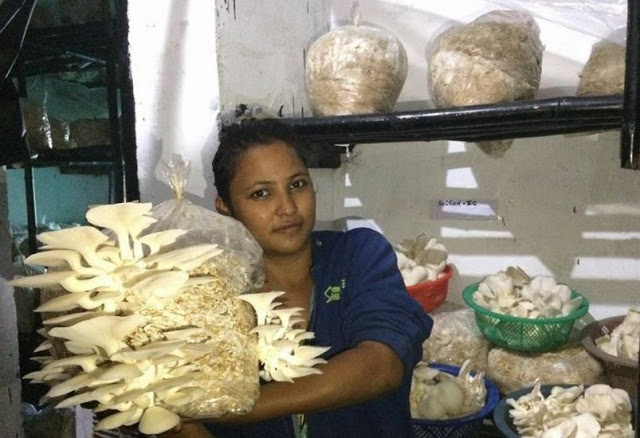 दिव्या रावत ने खेती से खड़ी कर दी करोड़ों की कंपनी, हजारों महिलाओं को दे रही रोजगार